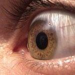 Mikroekspresje – makrowrażenie, czyli czyte oczy mogą kłamać?